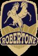 ROBERTONE Road Racing Bikes